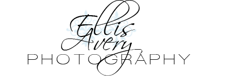 Image result for ellis avery photography